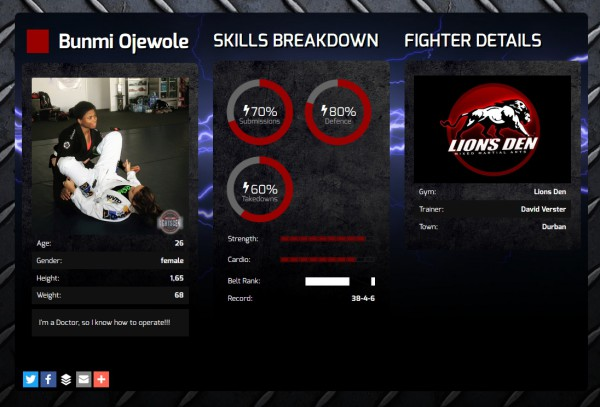 example_fighter_profile